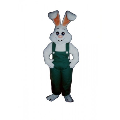 Rabbit and Bunny Mascot Costumes