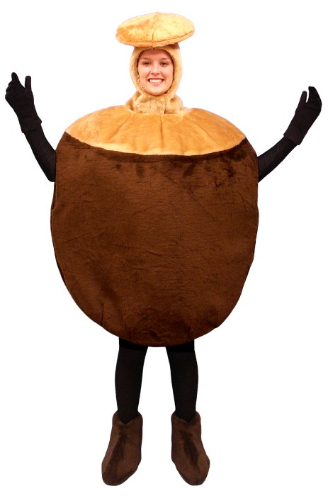 sc 1 st  Cheer Etc & Mascot costume #PFC12-Z Nut (Bodysuit not included)